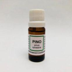 Pino Aceite esencial 10 ml