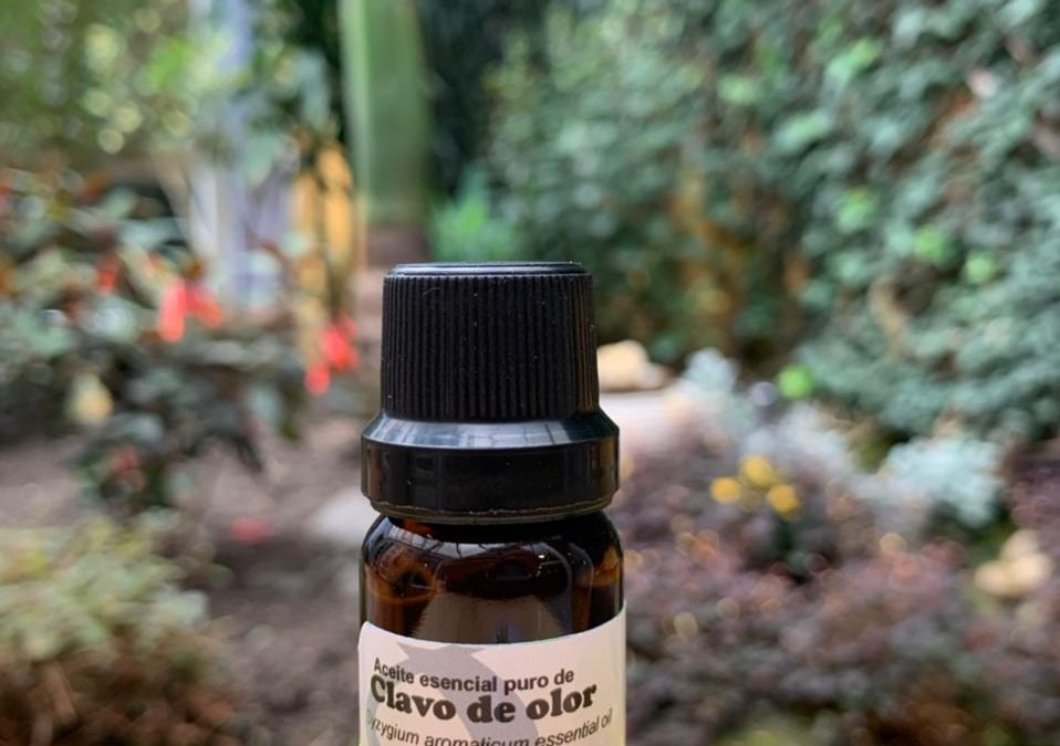 Clavo Aceite Esencial 10mL