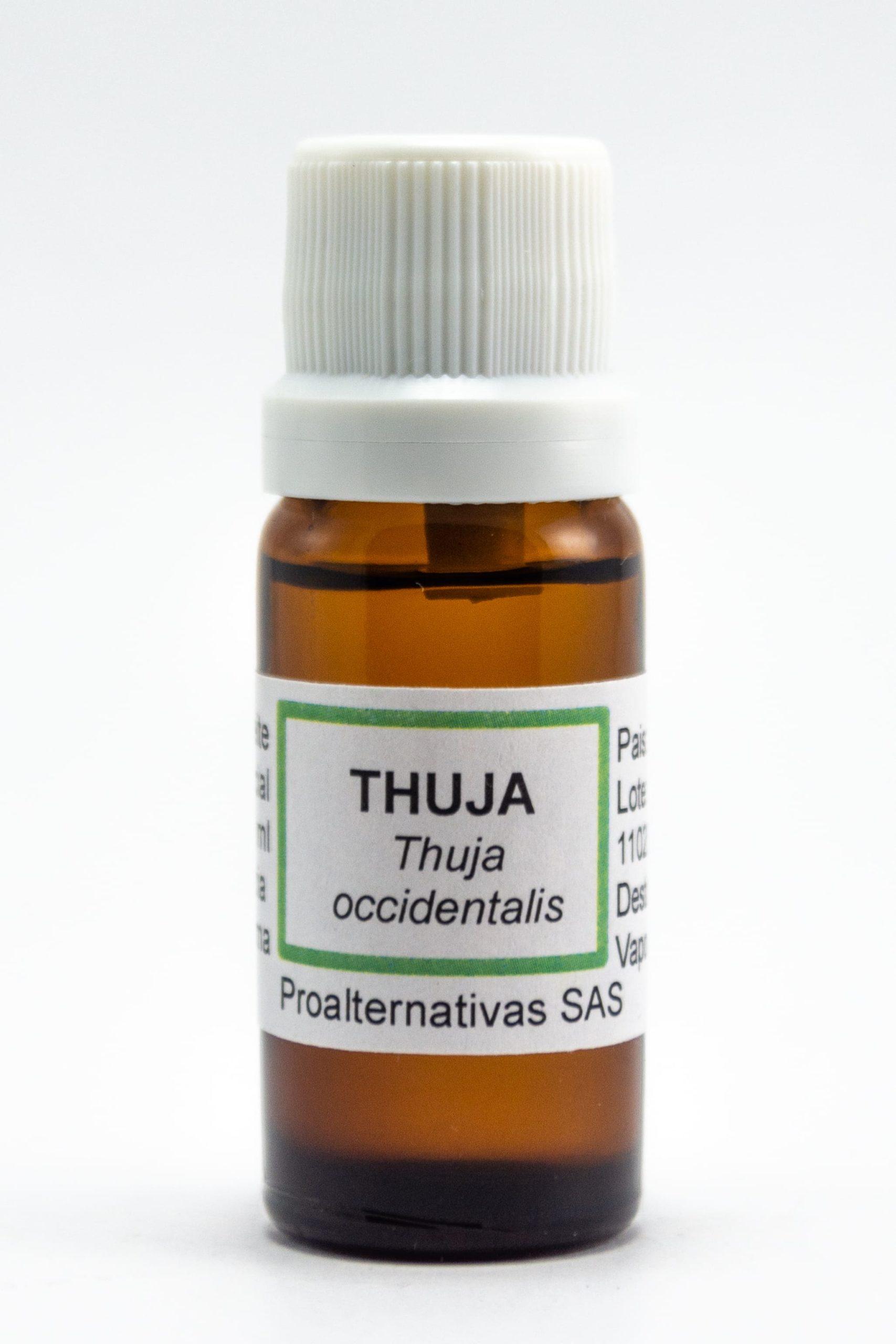 Thuja Aceite Esencial 10 ml