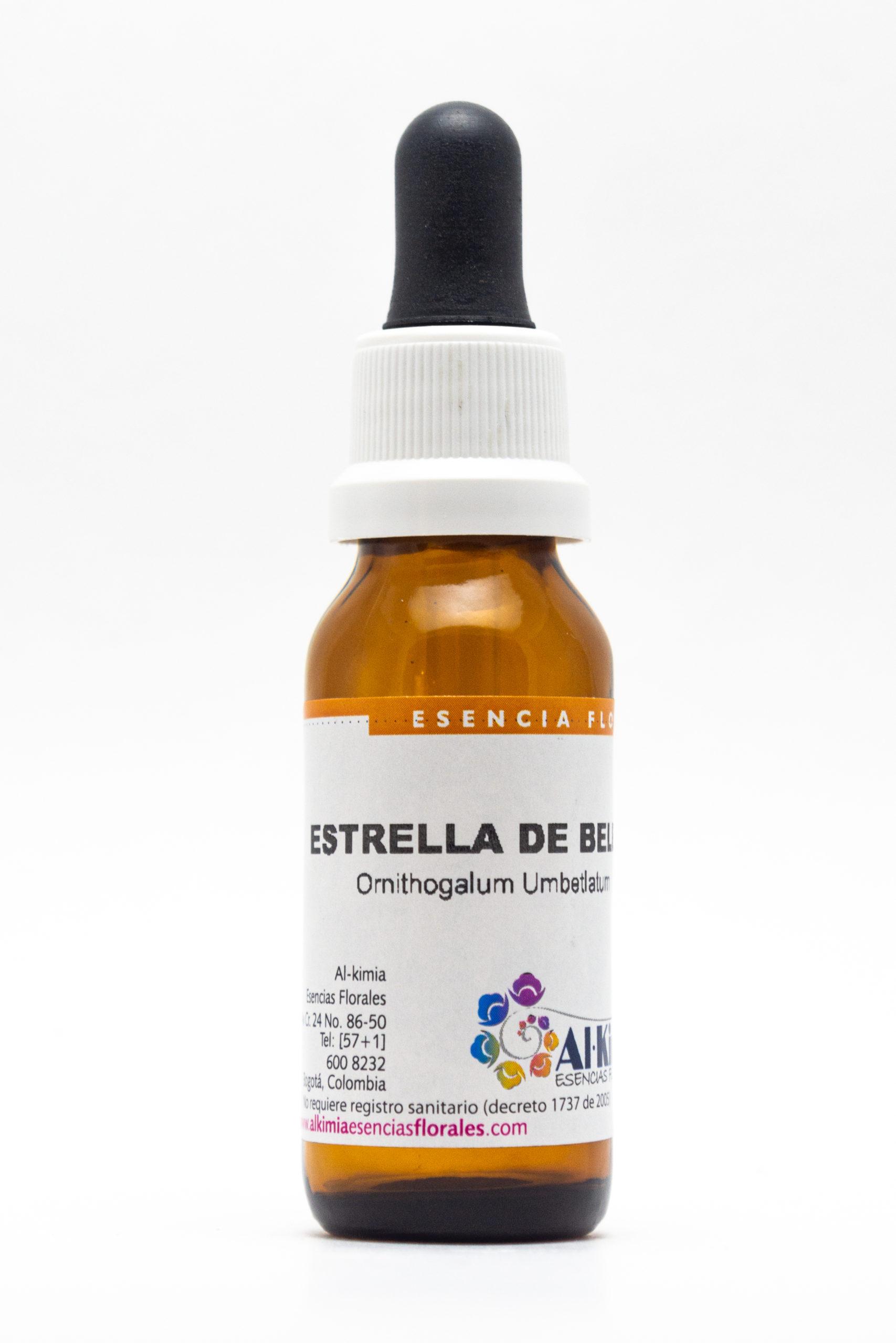 Estrella de Belén Botella Stock